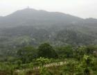 五坡下婆婆岩风景区 土地 666平米