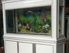 南昌鱼缸酒店鱼缸海鲜池 专业制作