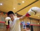 暑假寒假中小学体能搏击培训班散打格斗培训教学