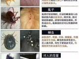 北京昌平天通苑,沙河,清河,24小時寵物醫生上門,疫苗
