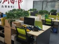 东莞南城网络推广