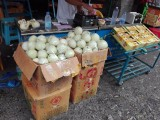 深圳水果批发市场