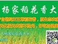 大杨家稻花香大米加盟投资金额1万元以下