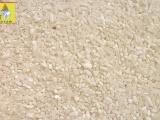 召发粮油大米批发 米粉加工原料用云南早稻
