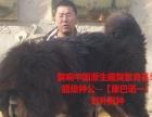 西宁宠物托运藏獒托运找獒响中国藏獒基地李强