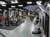 山东德州生产综合健身器材私教小工具
