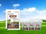 黄瓜专用肥供应商 价格合理的蔬菜专用肥潍坊哪里有