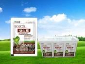 潍坊口碑好的蔬菜专用肥价格_大姜专用肥价格