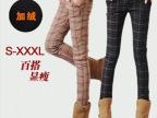 2013英伦风冬装女士休闲裤 加绒加厚显瘦格子靴裤小脚裤子D1029