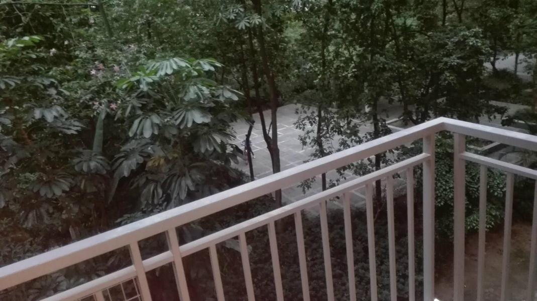 沙溪平湖秋月 全新装修 精装3房 家私家电齐全平湖秋月