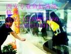 西安市专业清洗鱼缸定做鱼缸修理鱼缸观赏鱼治疗