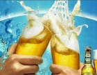 美林小镇啤酒招代理较新啤酒加盟 烟酒茶饮料