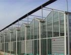 阳光板温室大棚造价大棚材料制作厂家-郑州亿龙