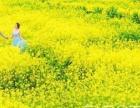 【人气客片】汉中较美油菜花海婚纱照-蒙娜丽莎