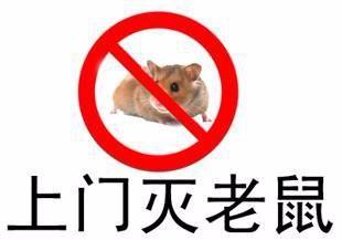 灭老鼠方法,广州灭鼠公司,家庭捕鼠,酒店餐厅电子灭鼠