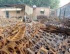 本人大量回收各种:废铁、废铜、废铝、废纸、等各种