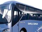 北海青旅租凭5-55座豪华旅游车汽车租凭业务