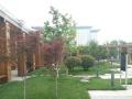 金水东路 美盛中心 290平 家具齐全 气派大堂