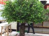 仿真大树 室内装饰大型假榕树假树装饰酒店大厅婚庆装饰绿植榕树