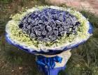 重庆市鲜花店99朵玫瑰多少钱99朵玫瑰的寓意是什么