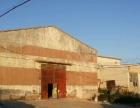 精品厂房 1000平米 低价出租