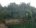 七仙湖旅游风景区中段