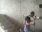 房屋拆除、旧房拆除、渣土清除