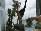 泉州节假日必备活动会动会叫的恐龙展