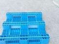 延边塑料托盘,塑料托盘厂家,吉林延边塑料托盘。