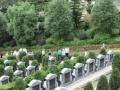 罗浮山永久公墓 藏风聚气 龙脉福地 福泽后人