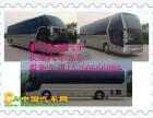 从青岛到石家庄大巴车/真的快客客车