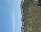 安阳县 曲沟工业园区 厂房 5555平米