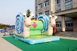 郑州上街区儿童节趣味运动会道具 郑州上街区开业庆典公司欢迎
