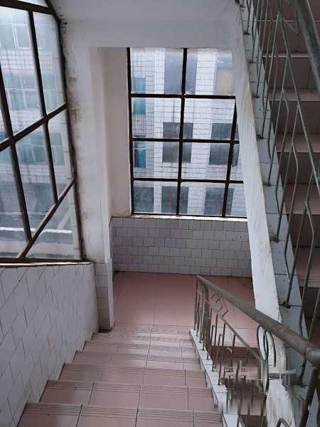 【图】南光路紫云小区别墅生活区烟厂,536平米湾金叶别墅洛龙图片