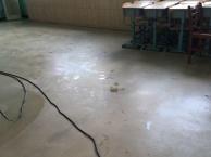 各类木地板打蜡保养。PVC地板清洗打蜡。地面清洗。