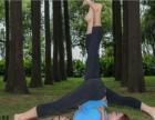 武汉汉口花桥附近学瑜伽教练培训班 零基础 免费试课