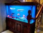 公司用缸个人用缸上门维护鱼缸布景换水消毒