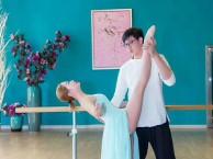 西安高新区科技二路路民族舞 古典舞 芭蕾少儿成人零基础培训