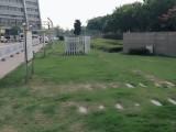 江北孔浦享受政策钢贸中心1003室90平精装修