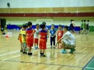 中南 徐东 青山 南湖附近青少年篮球训练营火热招生中