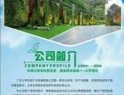 智能绿化 植物墙制作