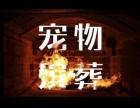 青浦华新镇哪里有宠物殡葬服务华新镇有没有宠物火化上门接送