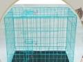 狗笼也可以养鸽子笼