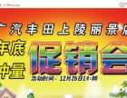 广汽丰田上陵年末冲量大促销