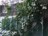 保山-城南盛世关楼小区57号1室0厅400元
