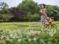 台州哈瑞Houring庄园儿童摄影