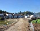 广州从化吕田镇附近国有证宅基地自建房出售距离梦想小镇近
