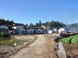 廣州從化呂田鎮附近國有證宅基地自建房出售距離夢想小鎮近