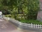 成都郫县景观园林pvc栏杆 塑钢围栏