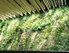 专业从事植物墙仿真植物墙绿植墙绿化墙垂直绿化立体绿化